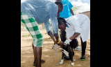 Wiping Out Rabies in Laikipia